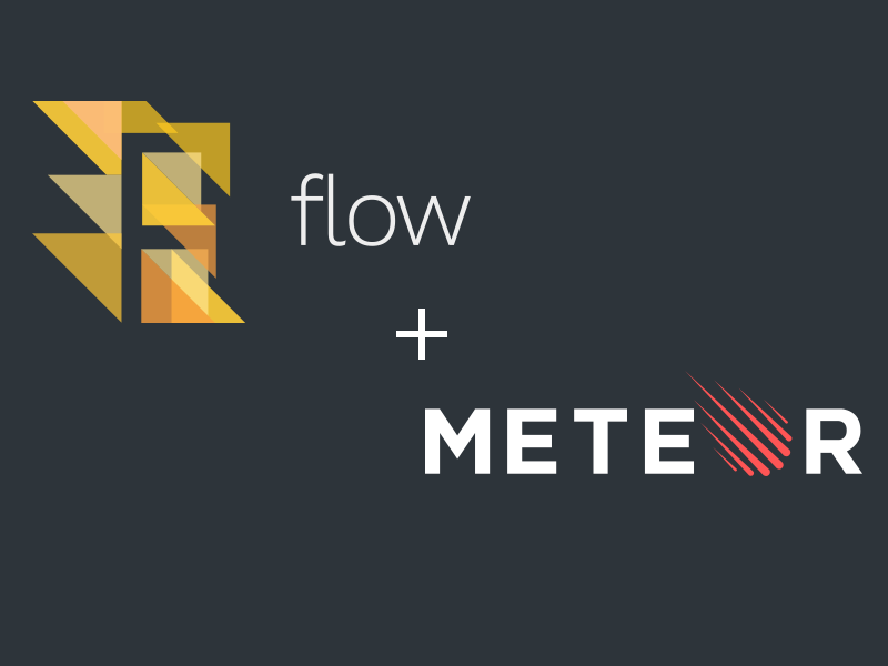 Flow type checker & MeteorJS